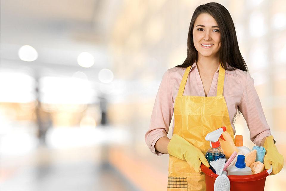 Mit einem Dienstleistungsscheck kann ein Arbeitgeber (natürliche Person) einen Arbeitnehmer für die Erbringung von einfachen haushaltstypischen Dienstleistungen im Privathaushalt des Arbeitgebers entlohnen.